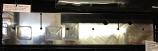 TAPPET CVR, RQV & 14X14 (LOGOED)